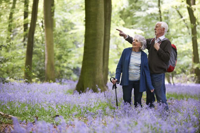 Para seniorów stojących na polanie w lesie