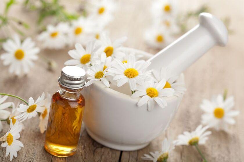 Do przygotowania inhalacji z rumianku używa się suszonych kwiatów
