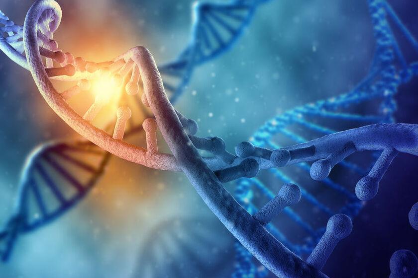 Wizualizacja chromosomu X