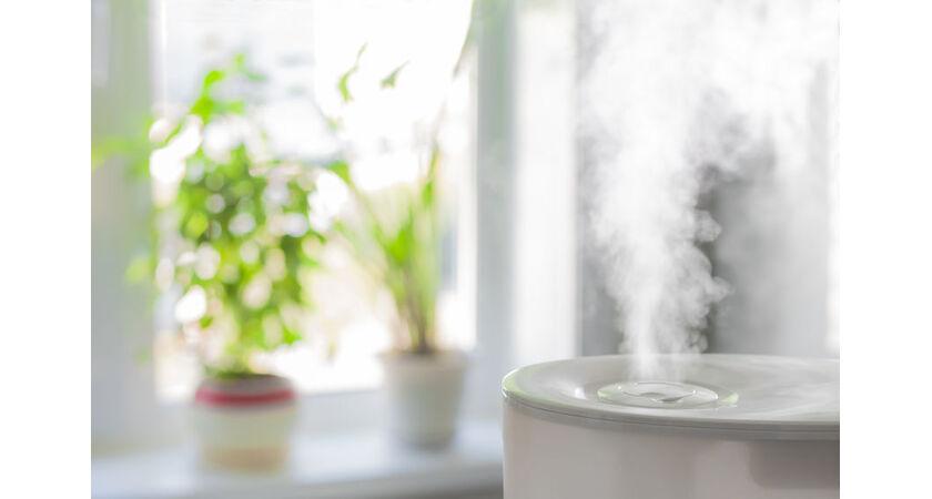 Nawilżacz powietrza w mieszkaniu