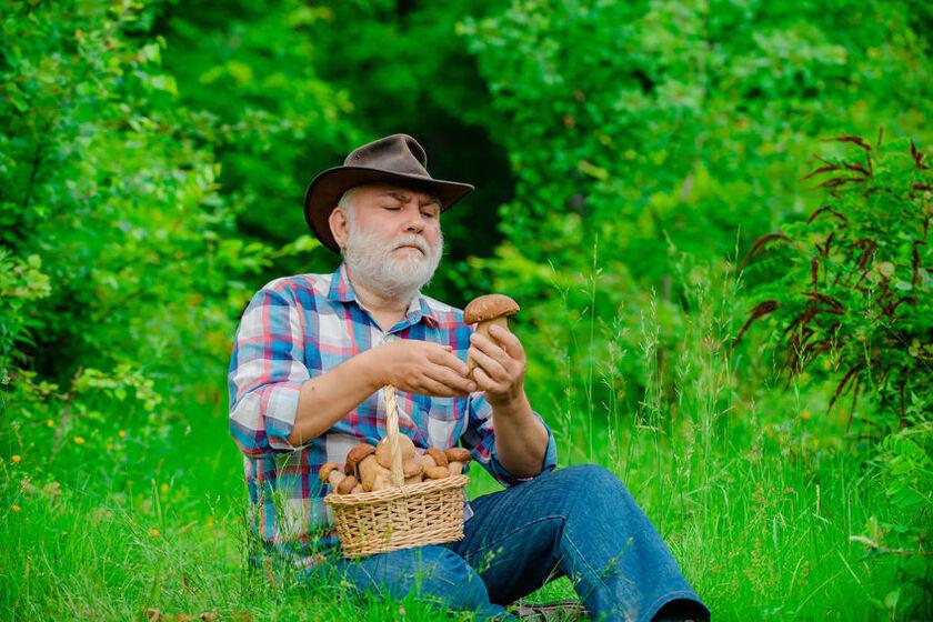 Mężczyzna na grzybobraniu