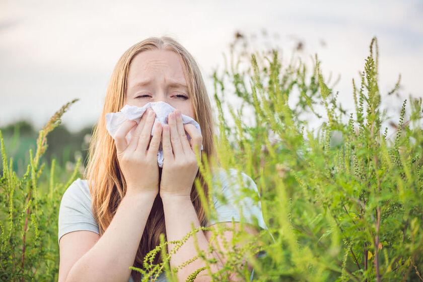 Kobieta na łące odczuwa objawy alergii