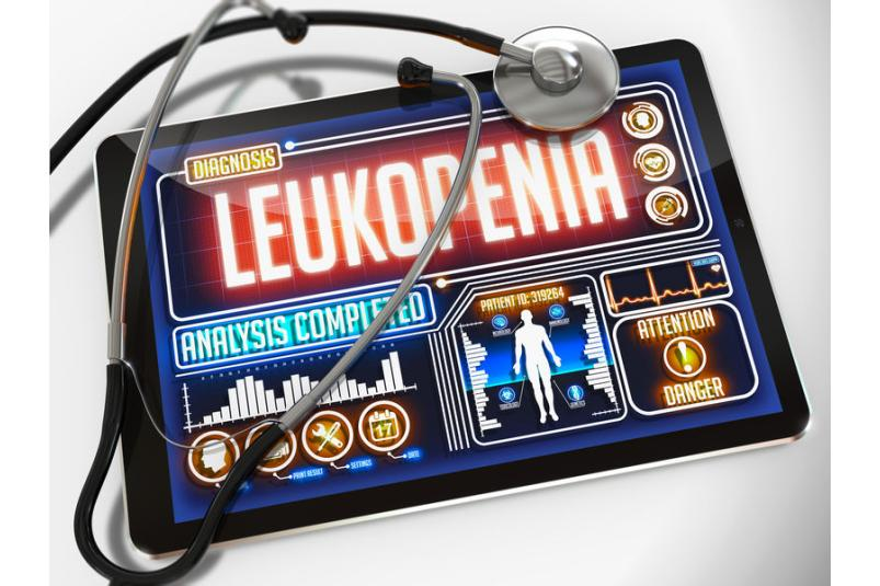 Tablet z wizualizacjądotyczącą leukopenii