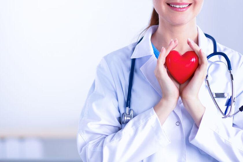 Kardiolog trzyma w dłoniach model serca