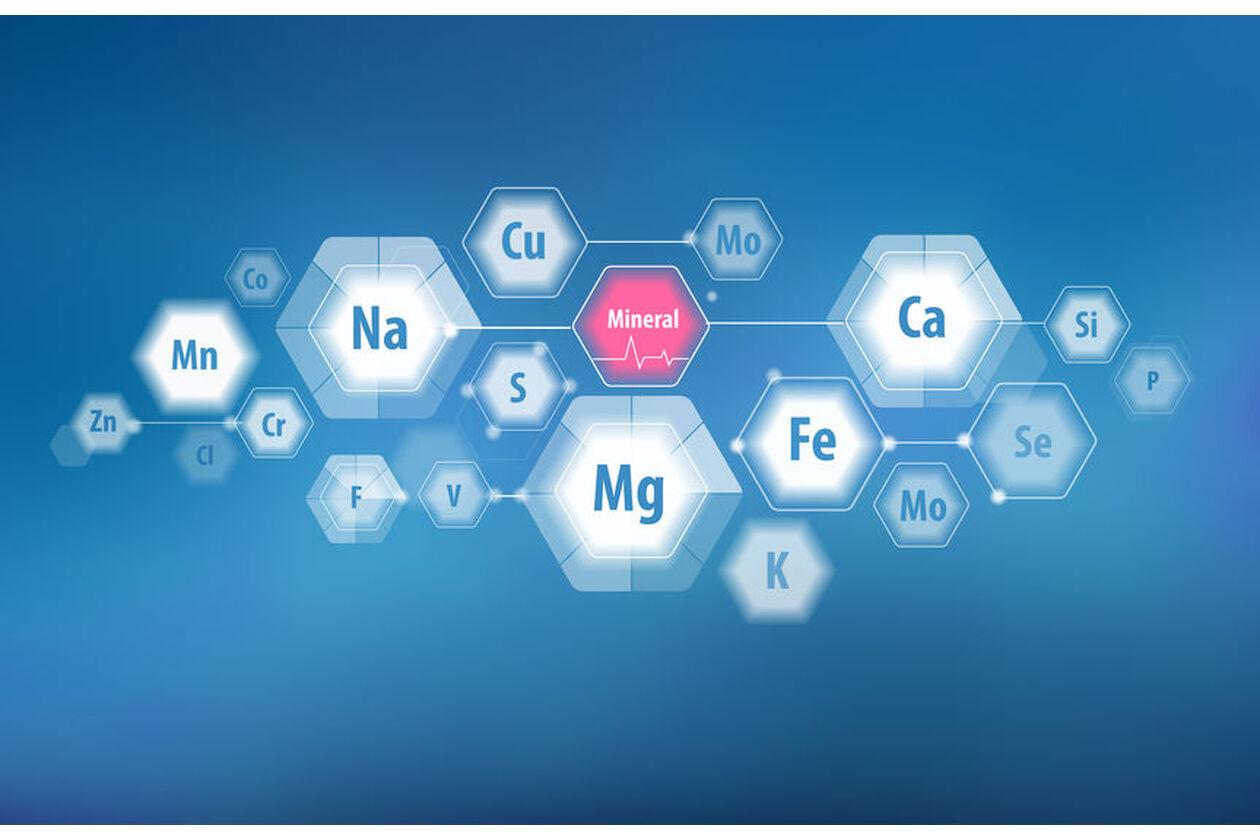 Przykłady makroelementów