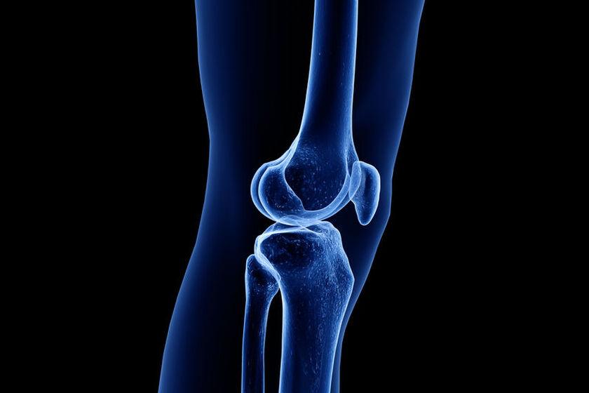 Wizualizacja kości nogi