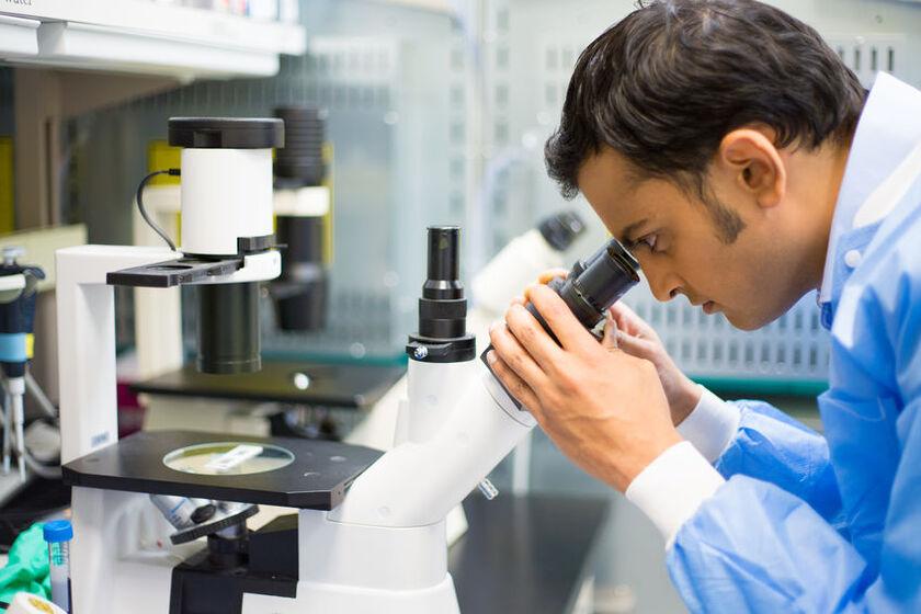 Patomorfolog patrzy przez mikroskop