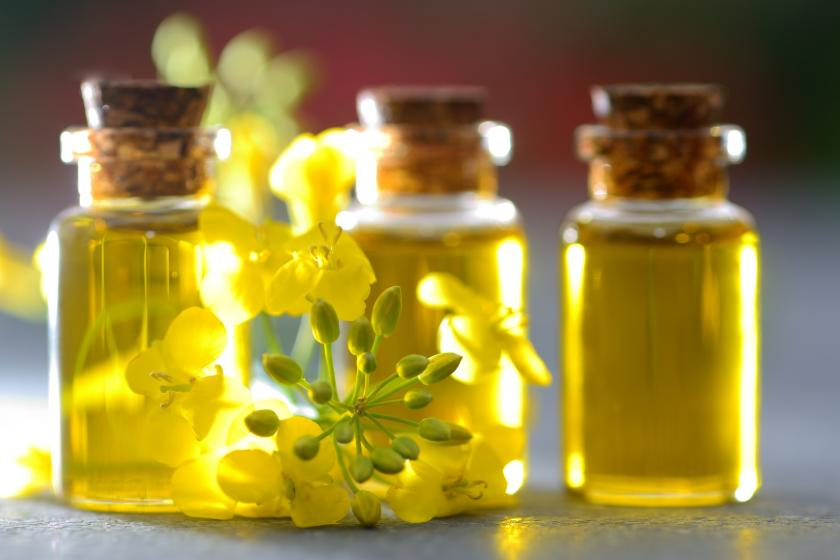 Olej rzepakowy w małych buteleczkach