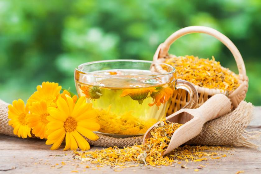 Żółte kwiaty nagietka lekarskiego w przezroczystym kubku z wodą