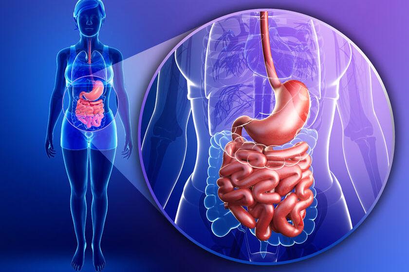 Choroba żołądka i dwunastnicy