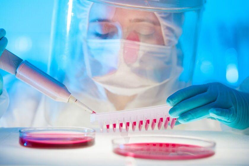Badanie próbki z morfologią krwi