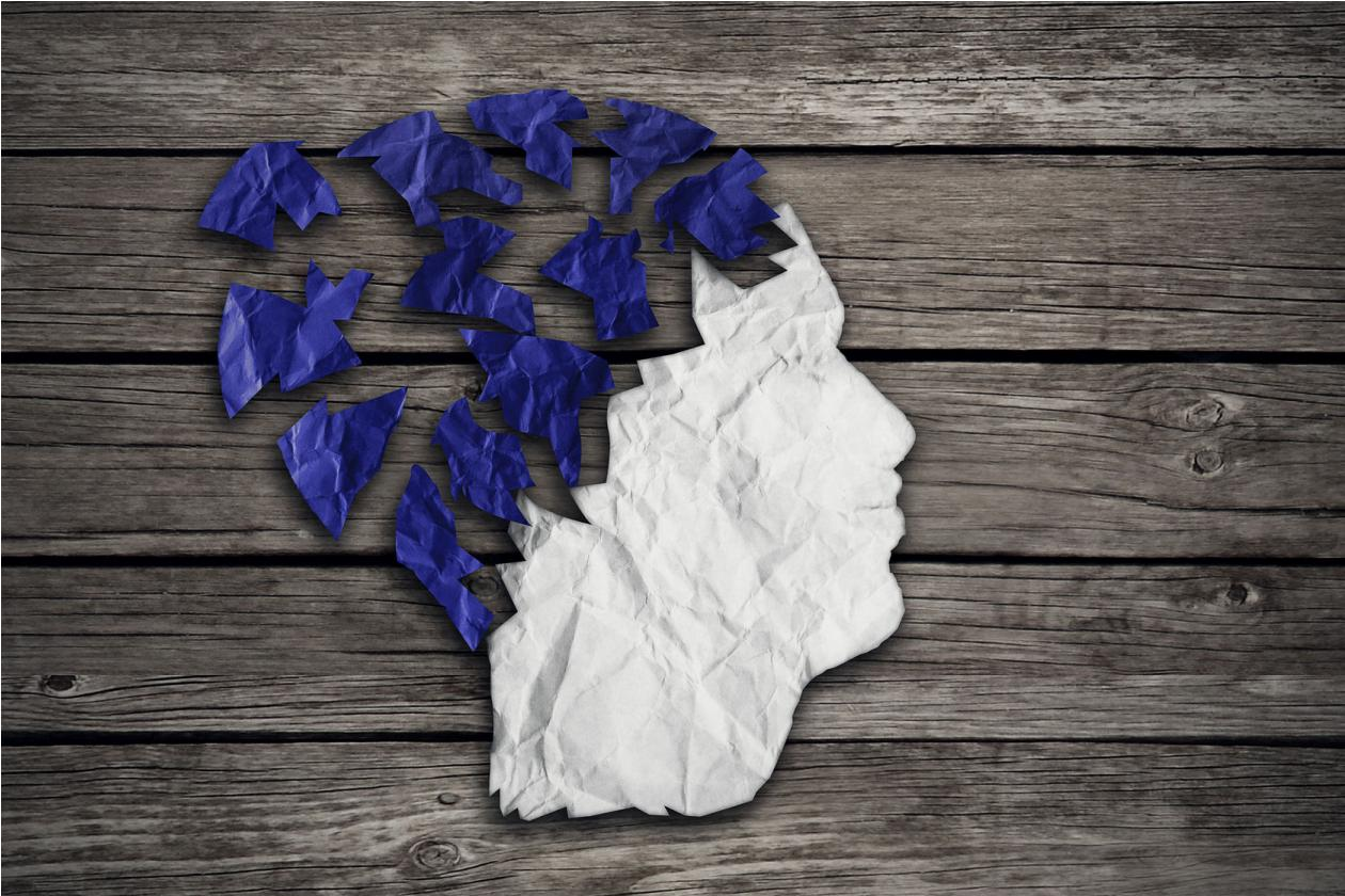 Mózg człowieka a pamięć
