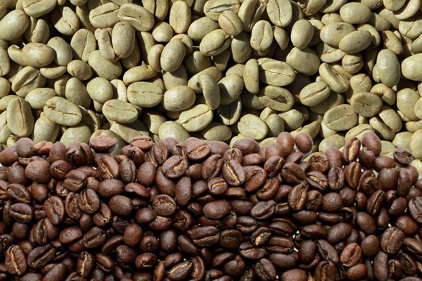 Zielona kawa do picia